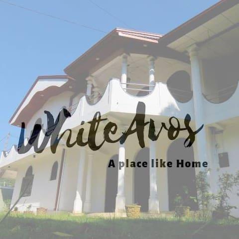 WhiteAvos