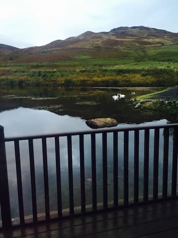 A lovely lodge on the edge of a small lochan. - Perth and Kinross - Lodge immerso nella natura