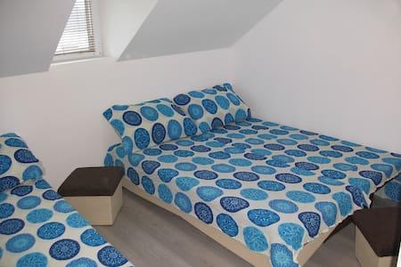Cozy 1/3 Standard room in pure nature of Guca - Hus