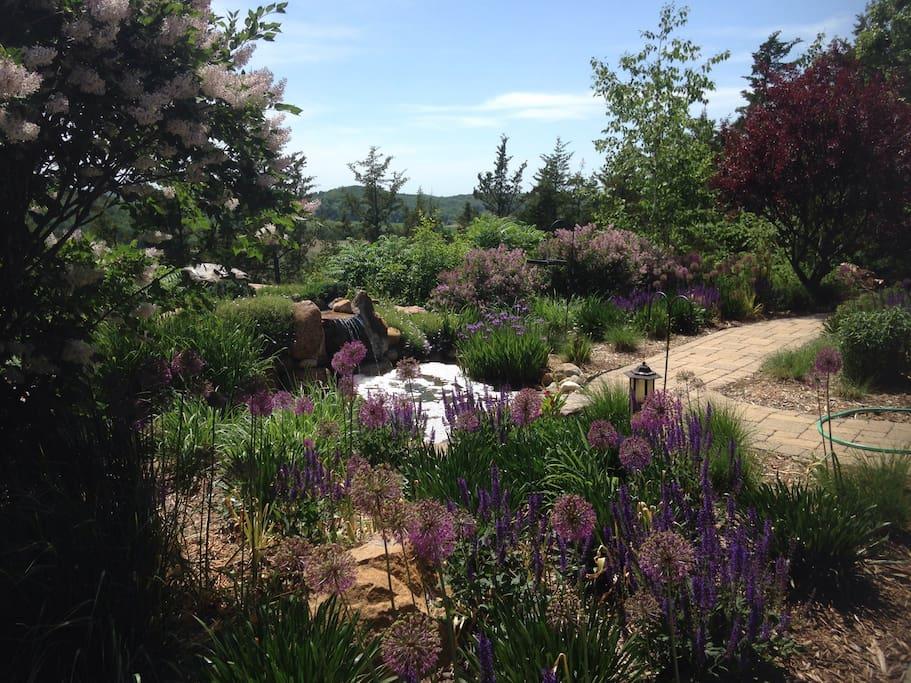 Perennial gardens.