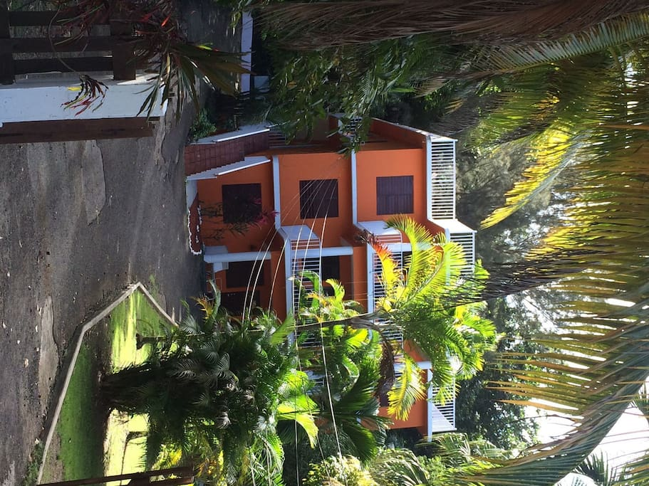 The front view of the house, surrounded by lush, tropical greenery.