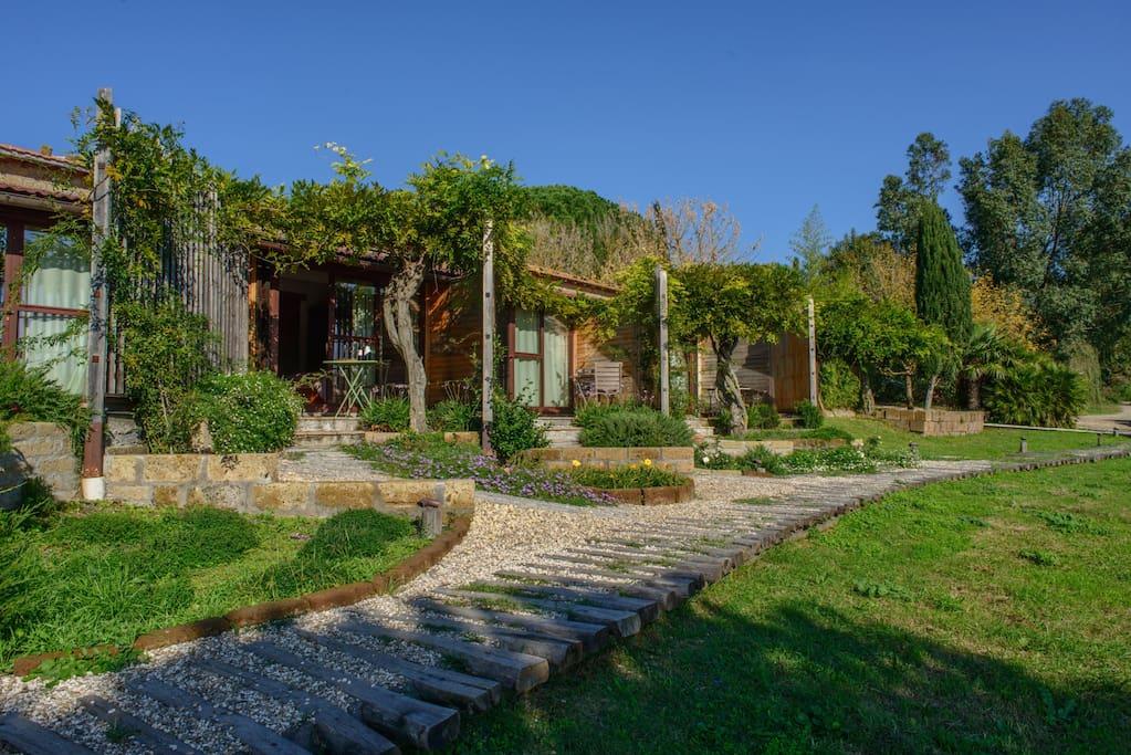 panoramic views on an organic farm chambres d 39 h tes louer tuscania latium italie. Black Bedroom Furniture Sets. Home Design Ideas
