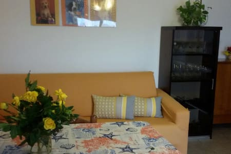 Your Comfy apartment in the green Pedagna - Imola - Apartment - 1