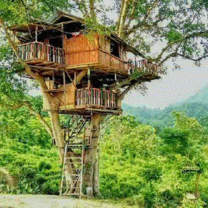 It'a a tree house next to himalaya.