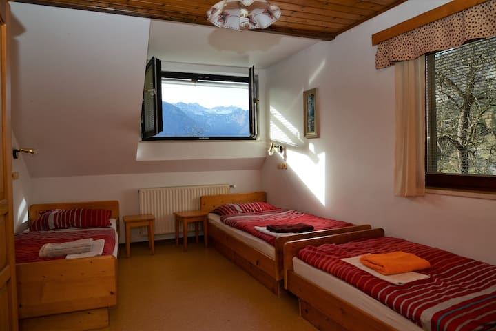 Amazing view to the Triglav National Park - Bohinj - Stara Fužina - Apartemen
