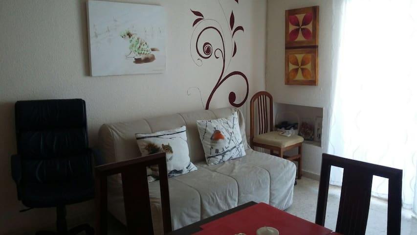 Bedroom private Wifi TV Parrking free in street - Cordova - Lejlighed