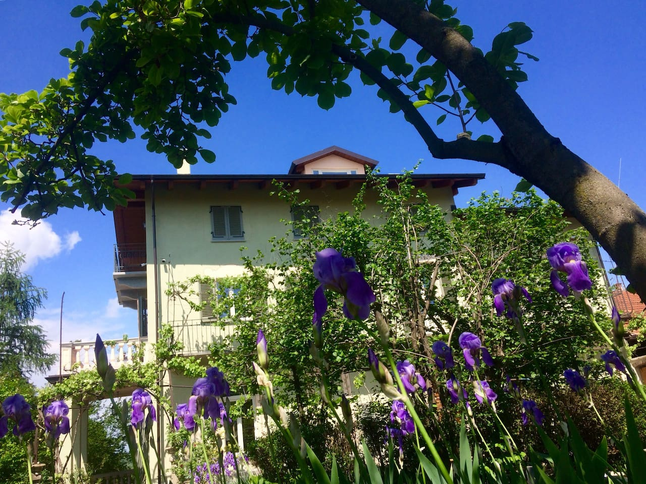 Giugno : casa vista dal giardino.