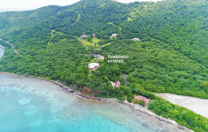 Tamarindo Beach 1-BR Apartment 1C