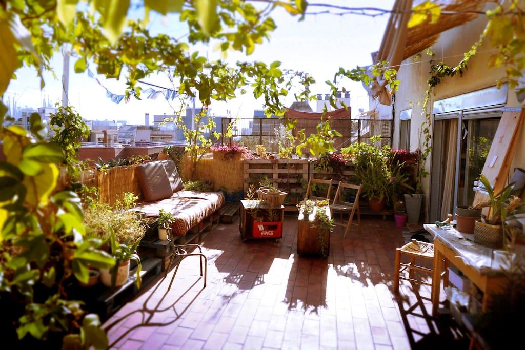 Baby friendly apartment 2 spacious sunny terraces - Baby spa barcelona ...