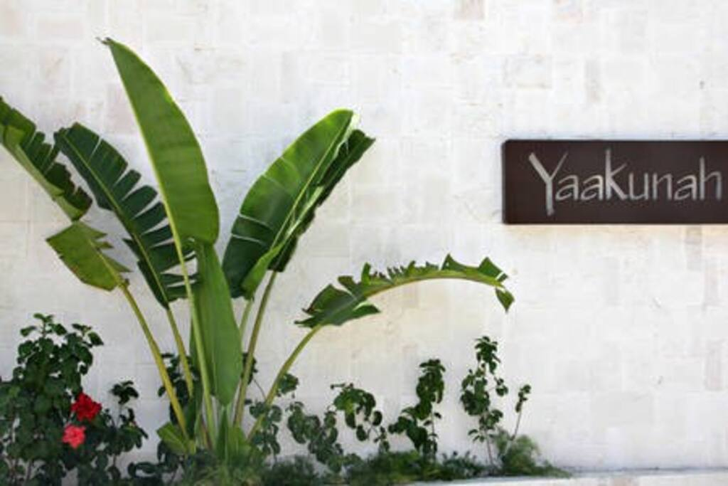 Private entrance to Yaakunah