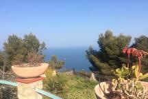 vista mare dalla rotonda (fronte casa ) e altro giardino in villa