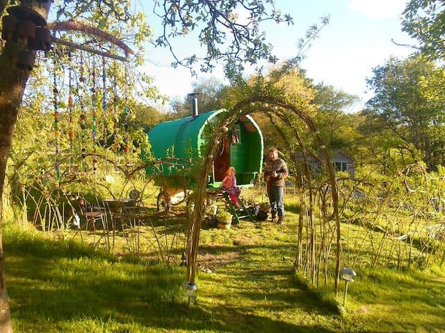 Gypsy Wagon In The Hills