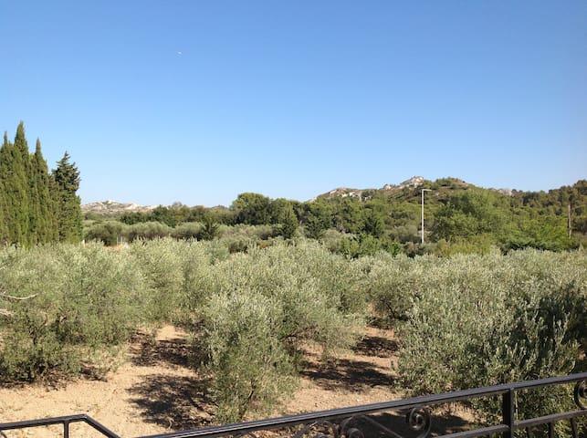 Appartement dans un Mas Provençal - Les Baux-de-Provence