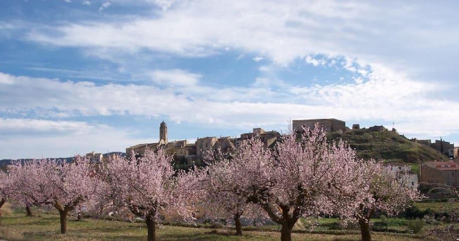 """Rural house """"Tossal del Maig"""" - Barberà de la Conca - Rumah"""