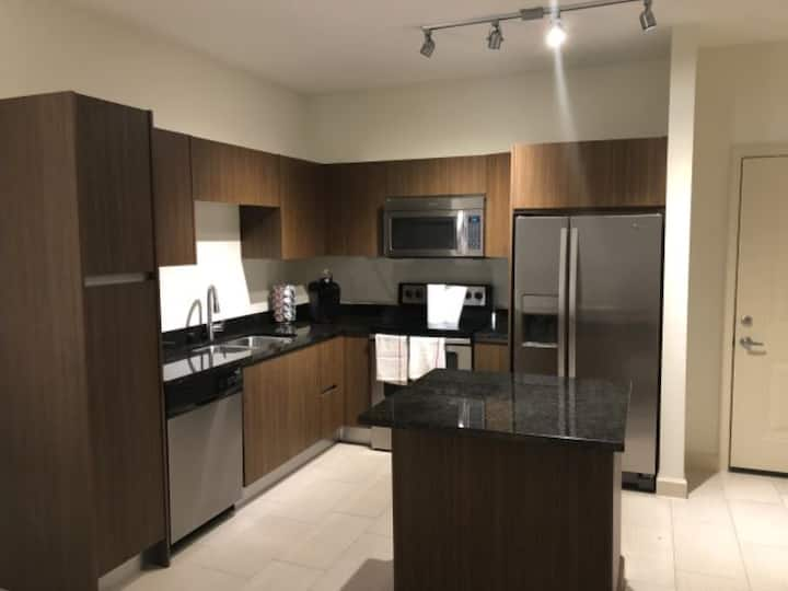 Modern, Luxury APT w/Balcony in Downtown Tampa