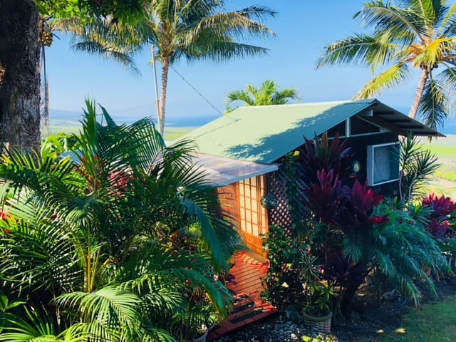 Kealakekua Bay Cottage With A View!