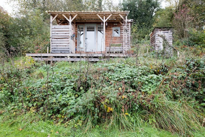 The Hut at Springfield