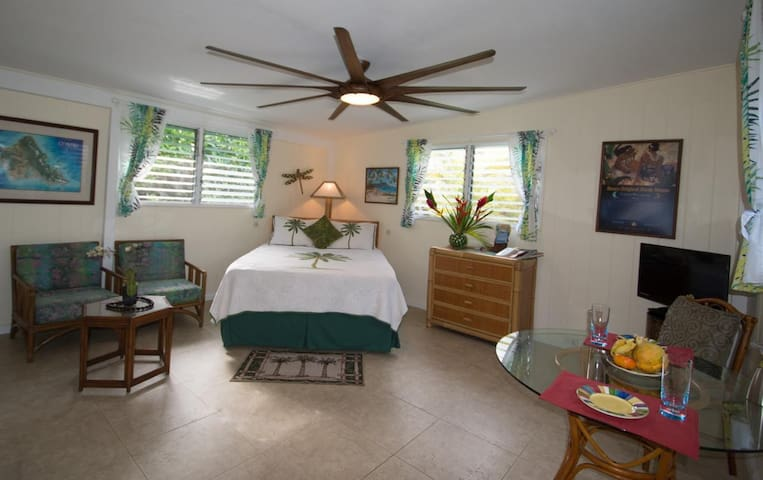 SUITE ALOHA - Play at the Beach