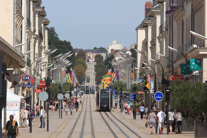 Appartement meublé proche centre et Tramway - Tours - Flat