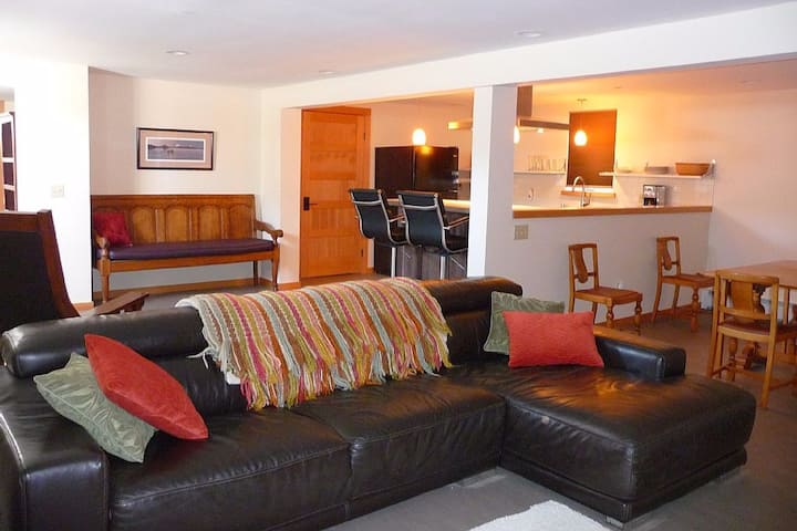 Contemporary 1000sf 1 Bedroom Apt on Gov't Hill.