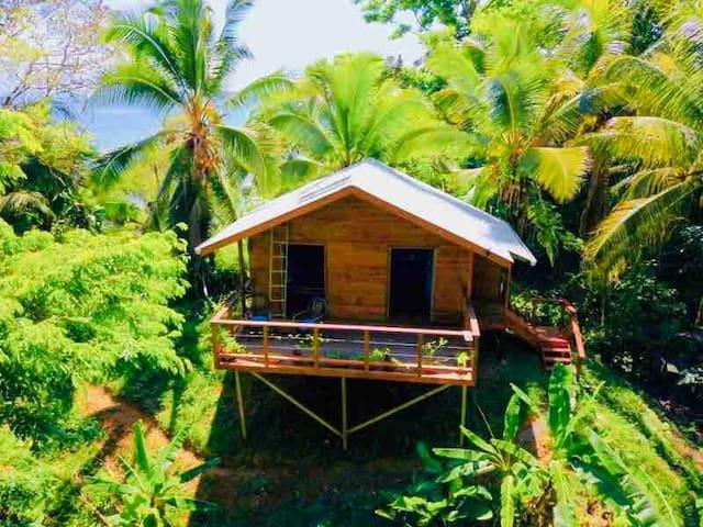Casita on the Knoll,  Isla Solarte, Bocas del Toro