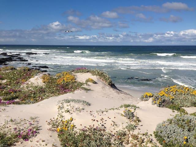 Beachfront Getaway - Self catering unit - Yzerfontein - House