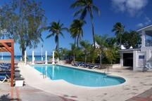 The communal pool available for guests at The Beach House