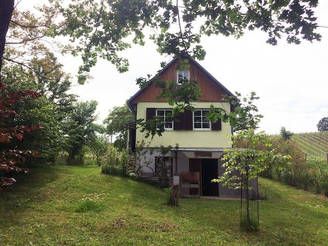 Behagliches & geräumiges Ferienhaus im Weingarten