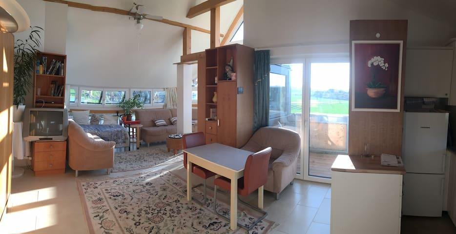 Panorama Wohnung (3-Zimmer-Wohnung) 2 Balkone