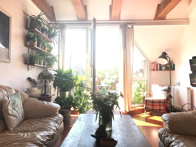 Cozy room in charming apartment in city centre
