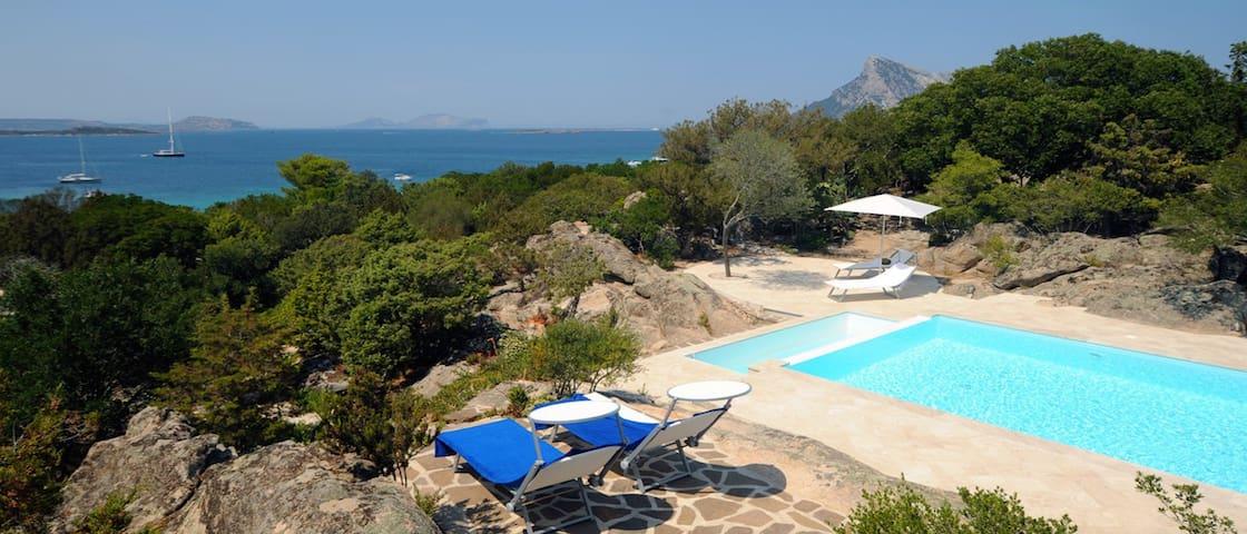 Villa Ciprea, ampia villa con piscina privata