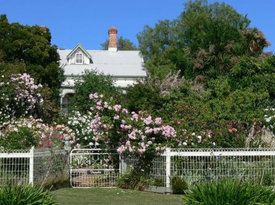 Dunedin, viewed down the rose-lined garden path