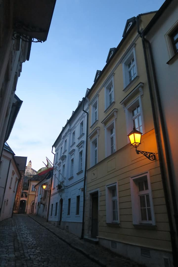 Historical house in pedestrian zone with 3 flats