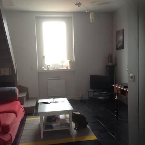 Entre Seine et forêt, charmant Duplex - Le Mesnil-le-Roi - Apartamento