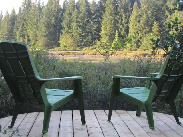 Peaceful Paradise on the Marsh