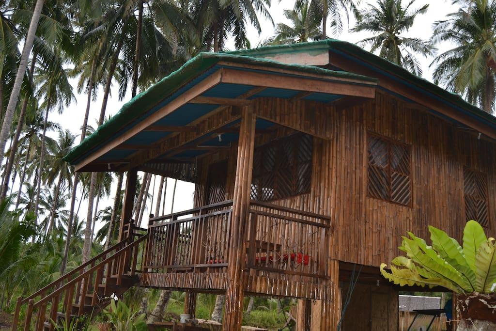 Kyla's House