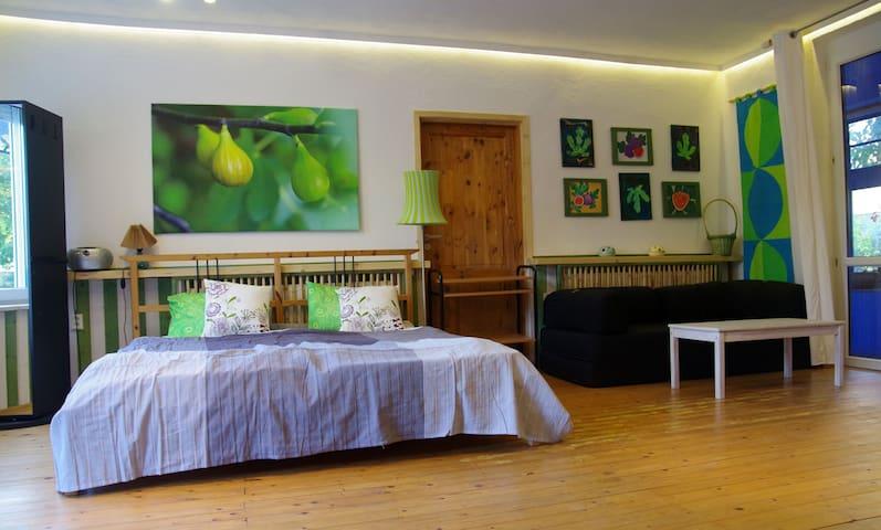 "Apartament ""Green Fig"" near Bratislava"