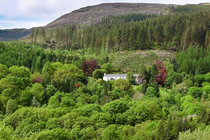Snowdonia's Secret Stay: Family and dog friendly