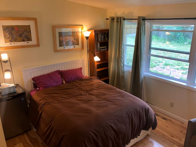 Dog Friendly bedroom in Carbondale