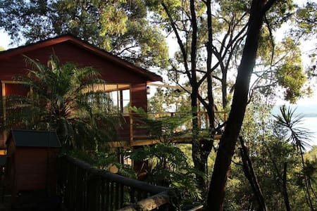 Treehouse in Small Enclave (Koolewong)