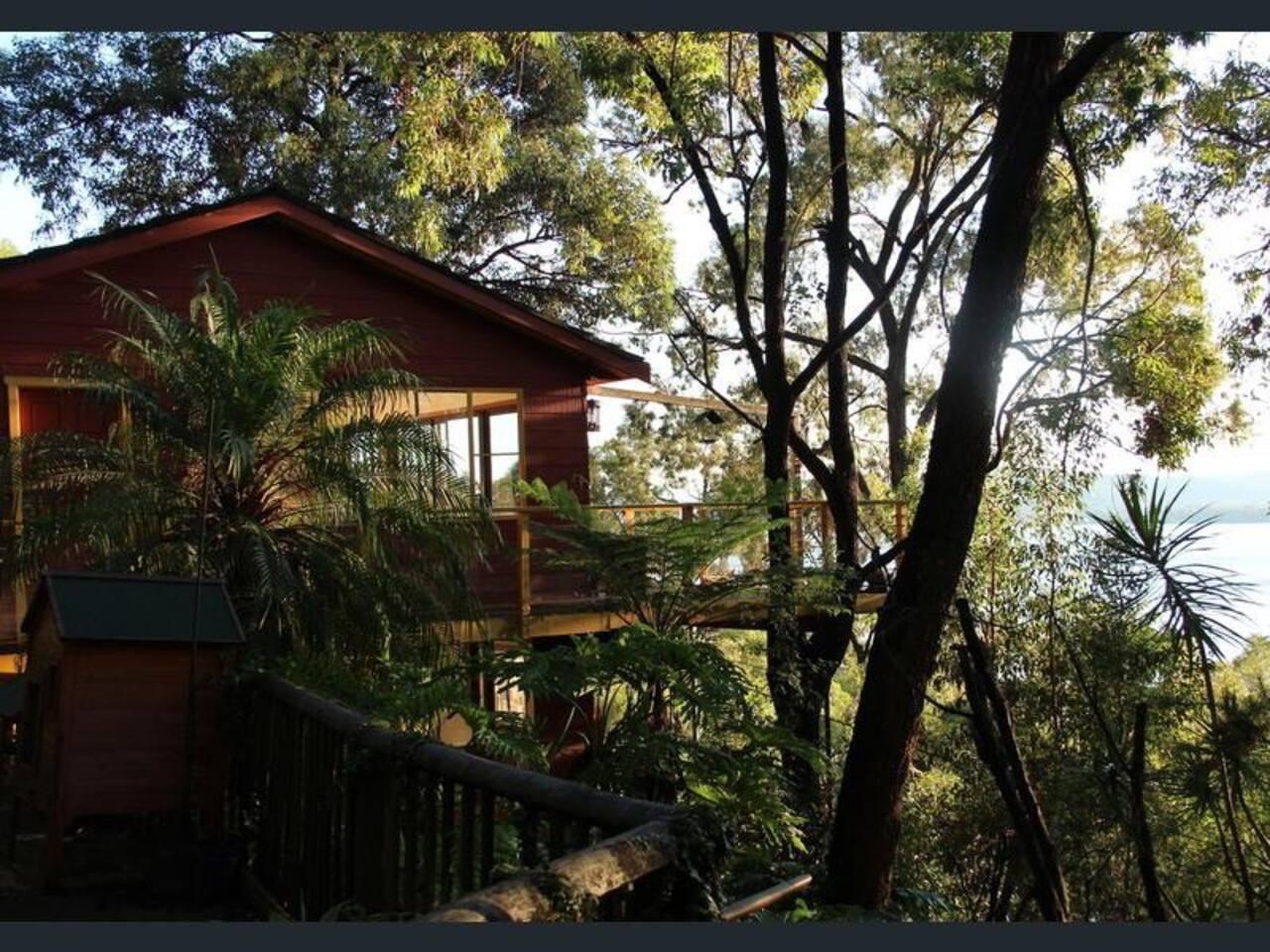 Treehouse at sunrise