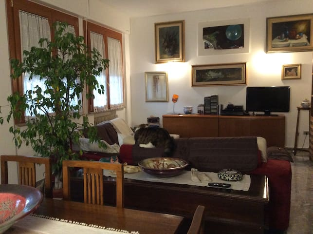 Casa Bella - stanza singola 1 nel cuore di Ferrara