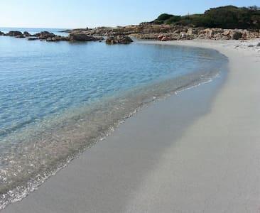 Villa Paradiso, sul mare con giardino mediterraneo - Cala Liberotto - Villa