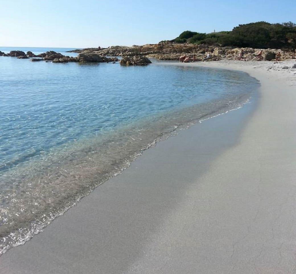 mare e spiaggia di sabbia fine bianca a 50 metri