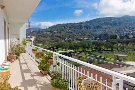 Room Pina - B&B La Capresina - ซอร์เรนโต้ - ที่พักพร้อมอาหารเช้า