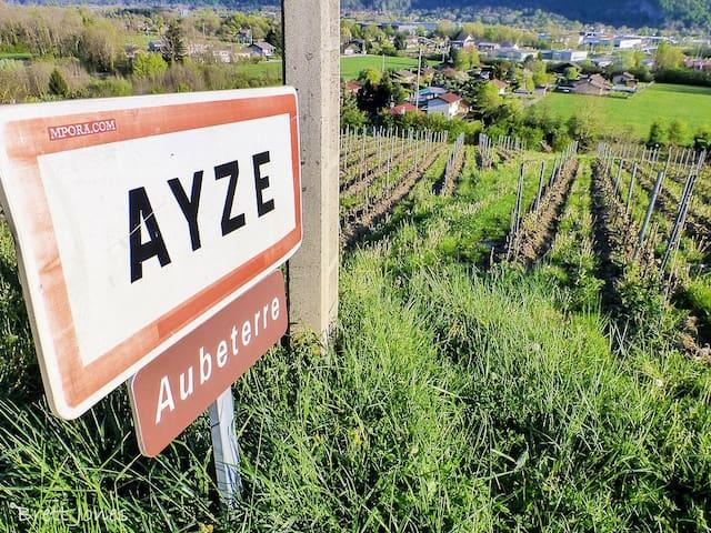 "Chalet ""Le Freddy"" Ayze - Ayse - House"