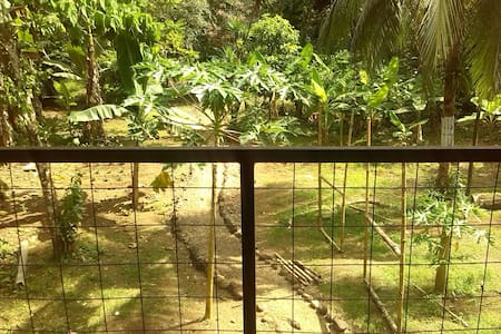 Cabina en área rural, Sarapiqui, Costa Rica.