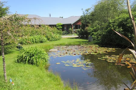 Clearwater B&B -  Double room - Fox Glacier