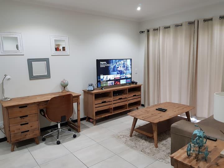 Modern Executive Apartment (w/ WiFi & Netflix)