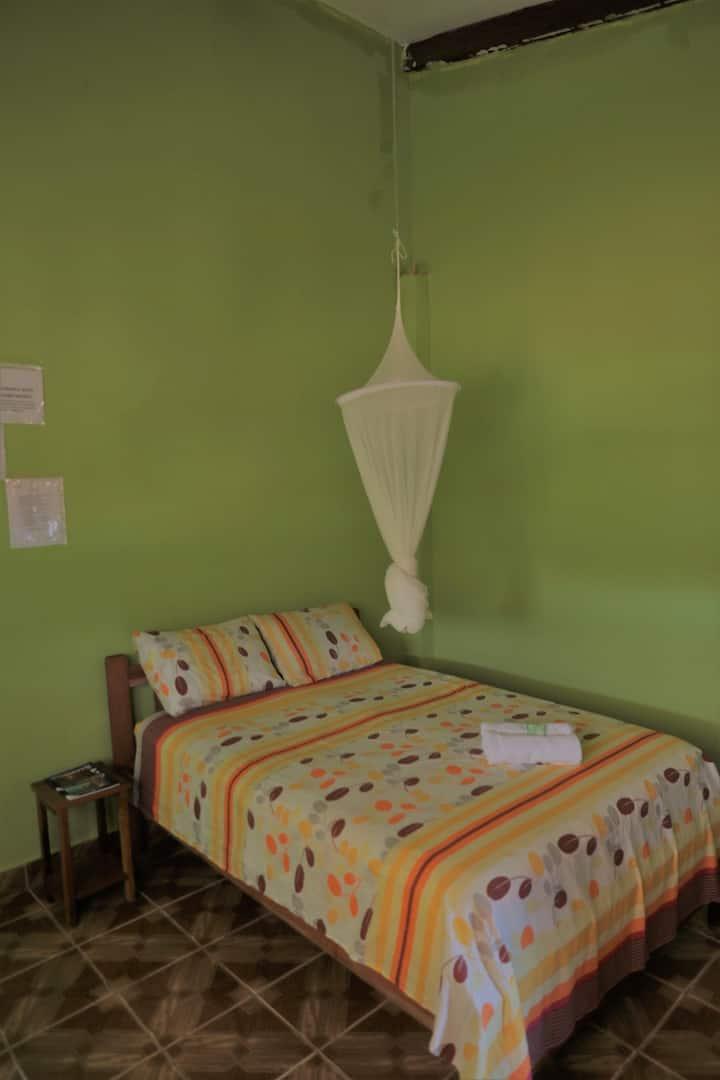Habitacion Twin en Perezoso GuestHouse